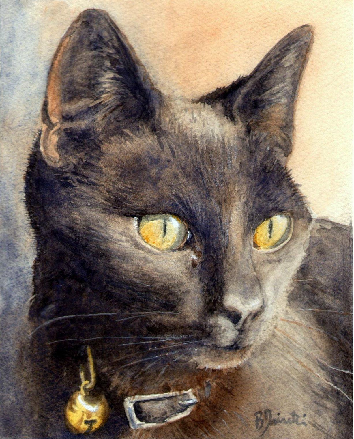 Bartolo Pairetti - Ronf, Il Gatto