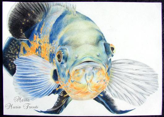 Pesce Blu - Marta Maria Trenti